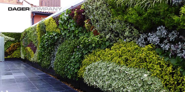 Techos verdes jardines en terrazas dager company - Jardin vertical en casa ...